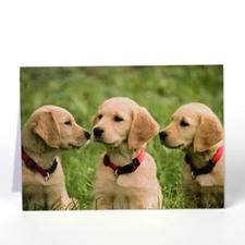 Cartes de voeux personnalisée animal de compagnie