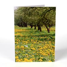 Cartes de voeux personnalisées photographie portrait